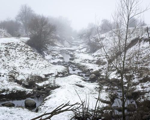 Rinnebäcksravinen i snö och dimma