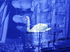 Off the old 2016 Vessel ... (dodagp) Tags: newyearwishes20162017 love peace beauty aquaticbirds swans symbols sailingboats sails reflections archipelagos aegean crystalclearwaters