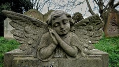 43/52 Stone. Faces of Brompton (flailing DORIS aka Fur Will Fly) Tags: bromptoncemetery brompton cemetery face stone angel cherub gravestone uk london wings broken