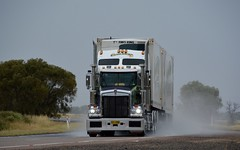 Nolans (quarterdeck888) Tags: trucks transport semi class8 overtheroad lorry heavyhaulage cartage haulage bigrig jerilderietrucks jerilderietruckphotos nikon d7100 frosty flickr quarterdeck quarterdeckphotos roadtransport highwaytrucks australiantransport australiantrucks aussietrucks heavyvehicle express expressfreight logistics freightmanagement outbacktrucks truckies wetroads rain interstate bdouble t409 t409sar sar kw kenworth nolans fridgevan markets refrigeratedtransport squaretanks