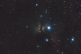 NGC2023/NGC2024 Flame and Horsehead nebula.