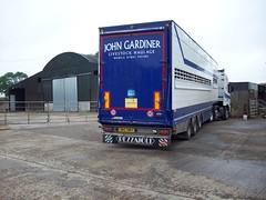 DRZ 7887 - John Gardiner Livestock Haulage Kilrea County Londonderry (Jonny1312) Tags: pezzaioli livestock lorry truck volvo fh13 livestocktruck cattletruck pigtruck kilrea