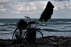 IMG_1658 (mazzottaalessandra) Tags: before snow neve prima tempesta freddo cold grigio nuvole nuvoloso contrasto canon teleobiettivo italy salento italia mare sea seaside bici bicicletta scogliera scogli pozzanghera acqua water bandiera movimento vento ventoso ventilato wind pomeriggio afternoon