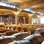Weinkeller in Mendoza, Argentinien