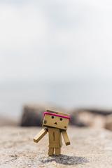 33/52 ~ Dani On The Rocks ({Andrea}) Tags: blur toy 50mm bokeh dani negativespace danbo niftyfifty revoltech danboard canoneos6d week33theme 52weeksthe2015edition week332015 weekstartingthursdayaugust132015