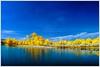 A day at the lakeside (_Opit_) Tags: bridge blue lake reflection nature water landscape ir gold lakeside infrared cyberjaya wowiekazowie inframerah