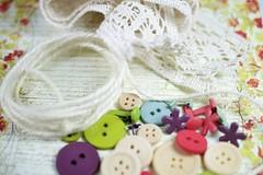 DSC_0054 (3) (nicoletta zanella) Tags: craft sew botton
