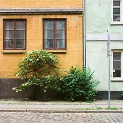 Copenhagen - Agfa XPS 160 exp* (magnus.joensson) Tags: door portrait building window architecture zeiss copenhagen denmark outdoor hasselblad carl agfa planar exp 80mm 500cm köpenhamn xps160 exp2006