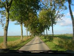 on the road in Rheiderland (achatphoenix) Tags: autumn oktober october ostfriesland eastfrisia byroad rheiderland seitenstrasen aotofenster