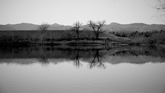 South Platte Trail in B & W (The Good Brat) Tags: autumn trees bw mountains reflection water river landscape