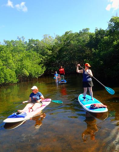 11_29_15 Private Paddle Tour Lido Key FL 10