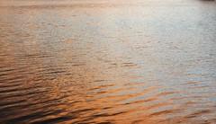 Morgen an der Eider - kupferfarbene Morgenröte vor dem Schneefall; Süderstapel, Stapelholm (6) (Chironius) Tags: stapelholm süderstapel schleswigholstein deutschland germany allemagne alemania germania германия szlezwigholsztyn niemcy eider fluss river rivière rio поток fiume stream wasserspiegel sonnenuntergang sunset atardecer tramonto zonsondergang закат dämmerung dusk schemering crépuscule crepuscolo abend evening abends abstrakt