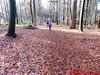 "OLYMPUS DIGITAL CAMERA • <a style=""font-size:0.8em;"" href=""http://www.flickr.com/photos/118469228@N03/23335202522/"" target=""_blank"">View on Flickr</a>"
