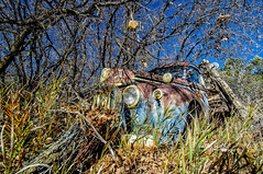Forgotten (Cathy Neth) Tags: old nature car landscape photography colorado oldcar pagosasprings rustycar transporation milkyway fogotten project365 oldrustycar 365project oldjunkcar 365photoproject flowermoundphotographer cathyneth cnethphotography flowermoundphotography 2015inphotos