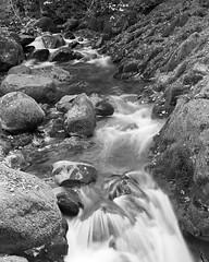 2015-10-RB67-Pan25016 (steveo_mcg) Tags: lake film rollei river flow rocks aqua stream force district lakes 25 pan flowing 1100 aira obsidian rb67