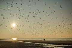@Home@the beach-Noordwijk (fransvansteijn) Tags: rood