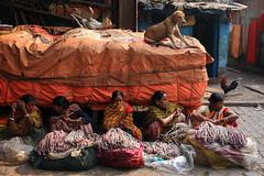 Kolkata cameo (Rajib Singha) Tags: travel street people outdoor trade women interstingness flickriver canoneos40d kolkata westbengal india