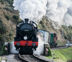 Swanage Railway - Winter Warmup 2016 (Ben_Broomfield) Tags: 31806 engine freight swanagerailway dorset d3300 steam smoke signal train track trees trains wagon winter warm up ben71824 ben broomfield nikon class 33 tank mongul railwayline railway wagons driver december event heritage lense lens lenses