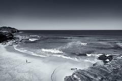 Tamarama (Bill Thoo) Tags: beach sydney nsw australia tamarama tamramabeach coast ocean sea pacificocean outdoors landscape monochrome blackandwhite sony a7rii samyang 14mm