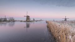 Purple Haze In Kinderdijk this Morning (Wim Boon (wimzilver)) Tags: wimboon wimzilver kinderdijk purplehaze windmill nederland holland alblasserwaard leefilter lee molen winter skating ice ijs canonef1635mmf4lisusm canoneos5dmarkiii