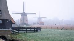 Strijkmolens C D en E. (pierre bakker) Tags: alkmaar noordholland netherlands nl molenkade oudorperpolder oudorp northholland nederland mill molen polder mist fog winter