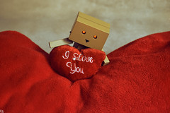 Danbo (Valentine's Day) 2 @ danbo/данбо (Robert Krstevski) Tags: danbo danboard danbomacedonia danbostory данбо toy toys toyphotography danboamazon amazon popular photography photooftheday photograph photo photographer robot carton danborou ダンボー colors color cute cuteness heart iloveyou love lovers valentine valentines macedonia македонија стоби флипс robkrst