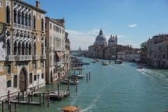 Venezia (Txulalai) Tags: venezia venice venecia italia grancanal agua paisaje landscape urbana travel arquitectura monumento iglesia church duomo sonyilce6000 sonya6000 sony sonyalpha6000
