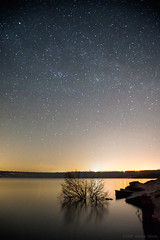 Run away from everything you hate (OR_U) Tags: 2017 oru germany helmstedt lappwaldsee night nightphotography stars water relection tree lakeshore nightsky starrynight medinalake