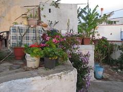 20160502-063958LC (Luc Coekaerts from Tessenderlo) Tags: grc greece kalavárda kalythies cc0 creativecommons 20160502063958lc flowerpot bloempot public nobody coeluc vak201605rodos vak rodos rhodes