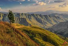 """Visiones -  Visions .  (para Jose Torres) (frankolayag) Tags: paisajes montañas frankolaya nikond5300 """"nikonflickraward"""" airelibre venezuela aragua arboles calima cordilleradelacosta naturaleza verde parapente nikon"""