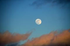Moonrise (Matt Champlin) Tags: moon snow cold arctic freezing life nature landscape beautiful twilight home peace peaceful quiet calm calming sunset clouds glow canon 2017