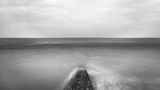 Le règne de la mer