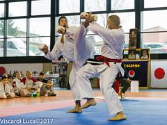 _MG_9645 (Lucavis) Tags: jka coppa cup italia karate