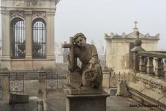 ,niño en la niebla (juansolergomez) Tags: cartagena cementerio los remedios niebla modernismo modernista