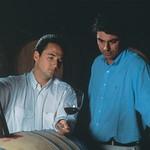 Önologen im Weingut Viu Manent in Chile