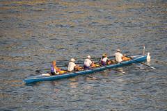 Rowers (ToDoe) Tags: reflection water river team kln rhine rhein teamwork rowers rudern rowingboat abendlicht oarsmen ruderer reflectios fnfer
