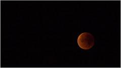 Lunar Eclipse 28.9.2015 (:: Blende 22 ::) Tags: moon night germany deutschland thringen nightshot thuringia total lunar eic elipse landkreis eichsfeld ef70200mmf4lisusm canoneos5dmarkii