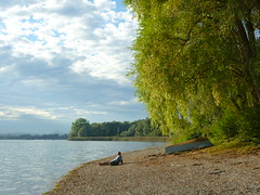 Kiesstrand am Ufer (Jrg Paul Kaspari) Tags: autumn fall herbst september bodensee 2015 radolfzell trockenheit naturfreundehaus markelfingen niedrigwasser