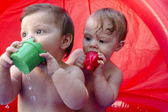 The Twins Fall 2015 (TeamNovak) Tags: family baby cute children fun twins babies sweet fraternal boygirl