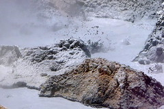 Geysers Sol de Mañana (8) (Mhln) Tags: sol mañana andes geyser altiplano bolivie geysers 2015