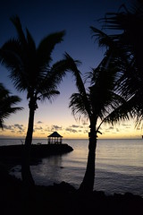 Samoa 2015 (panzerBab) Tags: sunset nature paradise tropic samoa