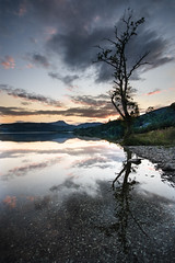 Loch Ard, Scotland (www.majdanikphotography.com) Tags: sunset reflection tree water beautiful scotland outdoor aberfoyle lochard majdanik majdanikphotography