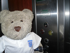 """I'll be the lift attendant!"" (pefkosmad) Tags: bear vacation england holiday ted game sport shirt bar toy football cafe team teddy euro stage soccer group hellas fluffy greece softie match greekislands pefkos griechenland rodos rhodes uefa lithuania vilnius qualifier dodecanese pefki holibobs associationfootball pefkoi panedicapo tedricstudmuffin tedscheekygreekyweeky"