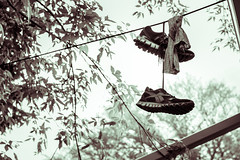 On a Line (Neil Volk) Tags: color colour green lines shoes power hanging tone obtuse