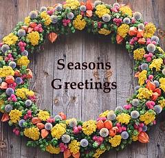 Seasons Greetings (pjpink) Tags: christmas winter decorations holiday festive virginia december colonial wreath williamsburg colonialwilliamsburg greetings 2015 pjpink