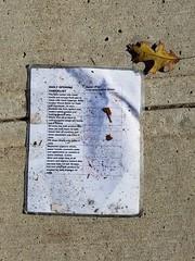 Daily opening checklist (dankeck) Tags: litter trash paper leaf sidewalk lost discarded