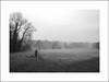 University broad on a foggy winter's morning (Christa (ch-cnb)) Tags: uea universityofeastanglia broad lake dogwalker dog walking fog winter park morning phonecamera motorola blackandwhite norwich norf norfolk england eastanglia uk
