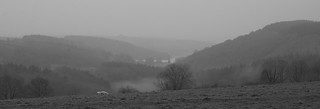 Mists in the valley of the Tavy