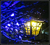 Winter Night Blues (bigbrowneyez) Tags: blue lamp lamppost light golden snow inter neve notte inverno freddo luce nature colours mood colori atmoshere bokeh winternightblues blu fun myfrontgarden miogiardino bello bellissimo beautiful artful creative fantastic fabulous awesome dof pretty