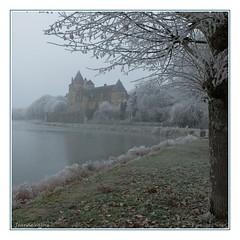 La Chapelle d'Angillon (Cher) (Jeanne Valois 64) Tags: châteaudebéthune château castel lachapelledangillon étang brume brouillardgivrant givre berry france cher brouillard arbre 18 reflet gel